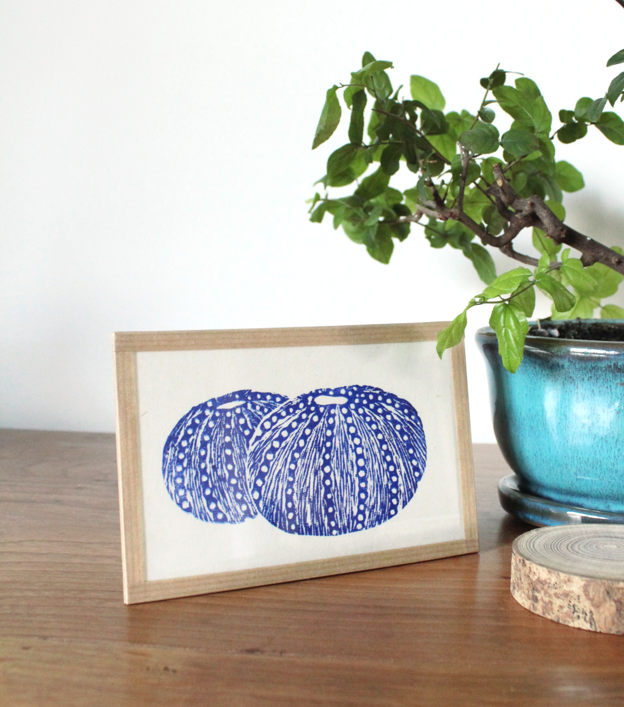 Linogravure oursins bleus 2